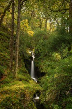 Poulanass Waterfall Glendalough County Wicklow