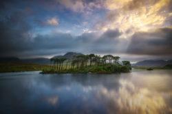 Derryclare pine island connemara galway
