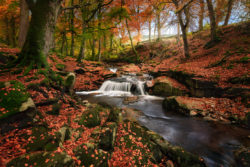 Autum in County Wicklow