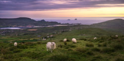 A view from Valentia Island in County Kerry looking out towards the Skelligs